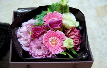 20090323flower01.JPG