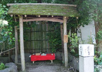 20090524hakone03.JPG