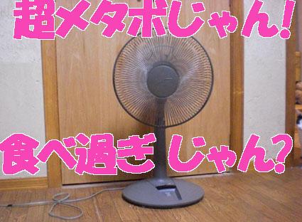 20090909senpuuki01.JPG