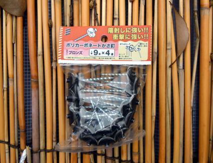 20100814fujimi06.JPG