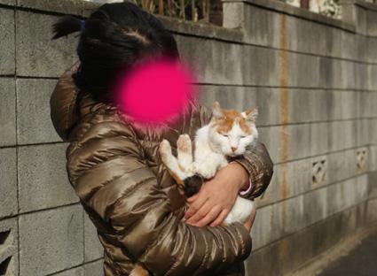 20110103home01_nana.JPG