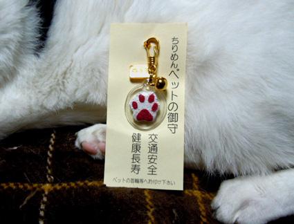20110508home01_omamori.JPG