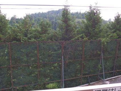 20140802fukushima07.jpg