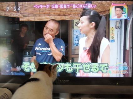 20140818shima01.jpg