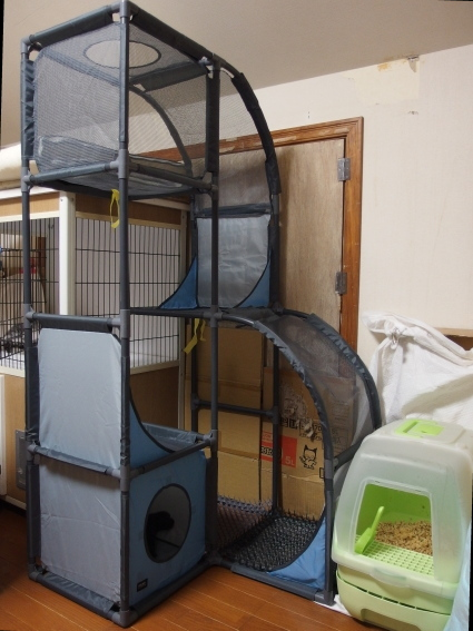 20140825CatTower01.jpg