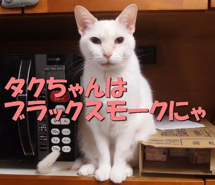 20151121yuki02.jpg