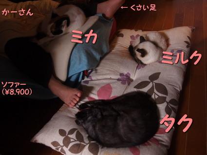 20160119home02.jpg