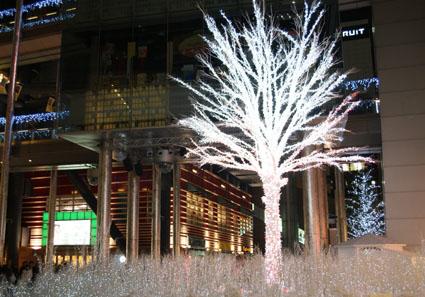 20081220shiodome05.JPG