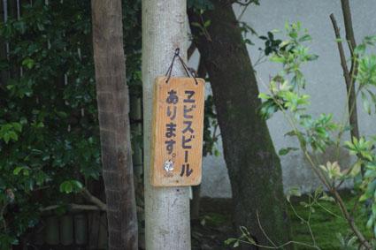 20090524hakone11.JPG