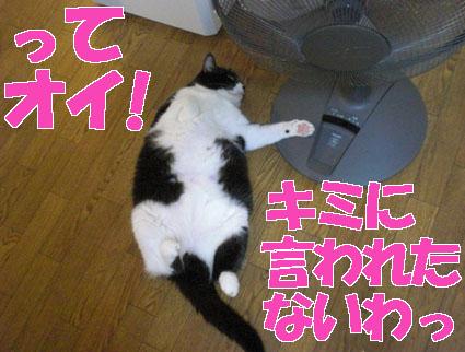 20090909suzu01.JPG