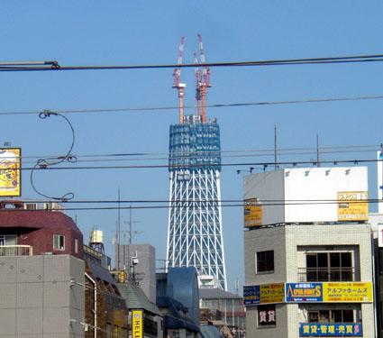 20091216tree01.JPG