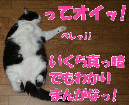 20100203suzu01.JPG