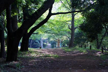 20100509park01.JPG