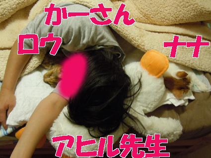 20110105home04.JPG