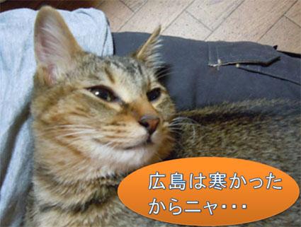 20111214home06_fuku.JPG
