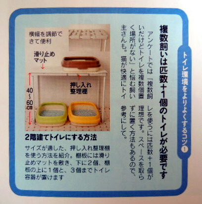 20111224nekonokimochi01.jpg