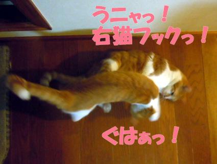 20121001home10.JPG