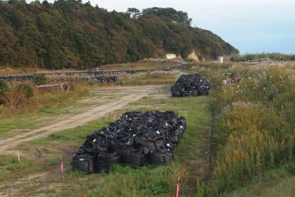 20131109fukushima18.jpg
