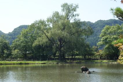 20140803fukushima57.jpg