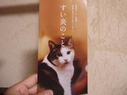 20161218suzu03.jpg