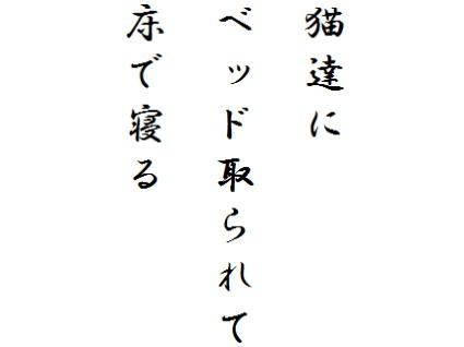 yuka02.jpg